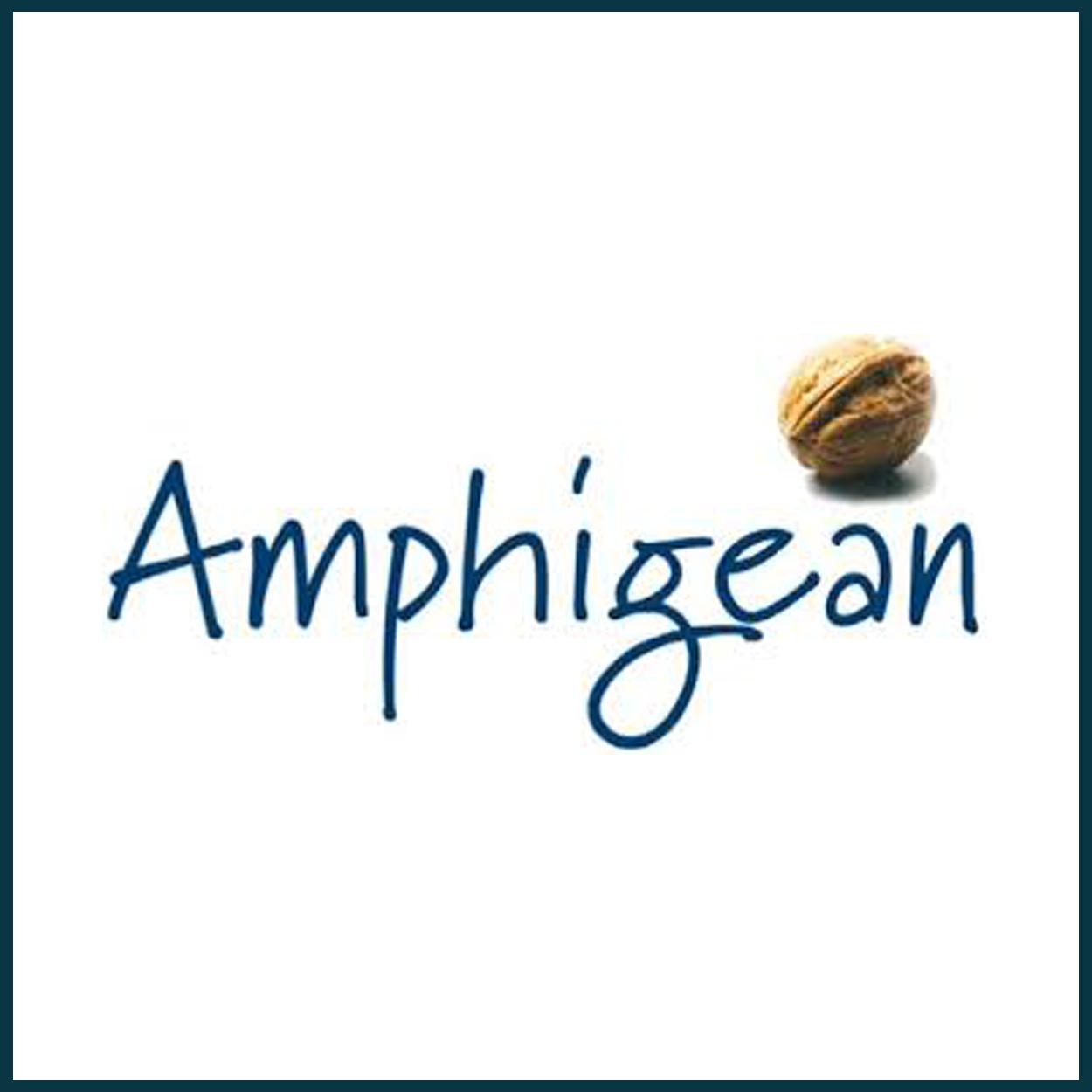 Amphigean